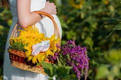Een jonge zwangere vrouw in haar witte kleding omhelst haar maag, met een mand van bloemen in het midden van een zonnebloemgebied royalty-vrije stock foto