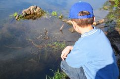 Een jongen bevindt zich door het bosmeer en bekijkt het kalme water Aard, overpeinzing, inspiratie, openlucht Gang in openlucht royalty-vrije stock fotografie
