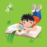 Een jongen die zijn studie van lieveheersbeestje doen openlucht Stock Foto