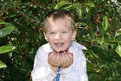 Een jongen eet het fruit van moerbeiboom Royalty-vrije Stock Foto