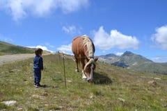 Een jongen en een paard pyrenees Bergen Stock Afbeelding