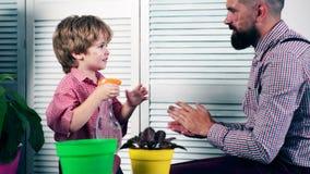 Een jongen en zijn vader slaan in de palm en geven de bloemen water De vader en zoonsinstallatie bloeit in potten Het concept van stock videobeelden