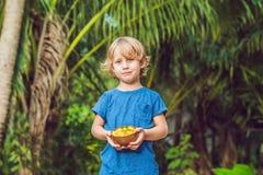 Een jongen houdt een plaat van mango's op een achtergrond van palmen stock foto's