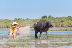 Een jongen in kleding het baden buffels dichtbij Meer Dau Tieng, Vietnam Stock Foto