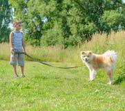 Een jongen met een hond stock foto's