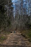 Een jongen met Fiets het spelen op een bosweg royalty-vrije stock foto