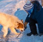 Een jongen met een hond in de stralen van een zonsondergang op de sneeuw royalty-vrije stock afbeeldingen