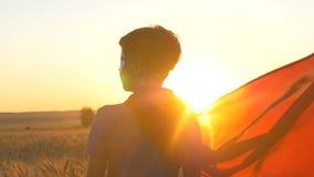 Een jongen met een kaap van een superman bevindt zich op het gouden gebied van tarwe bekijkend de horizon stock footage