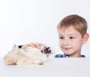 Een jongen met proefkonijn. royalty-vrije stock afbeelding