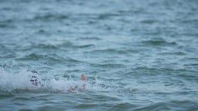 Een jongen springt in het water met zijn Langzame geanimeerde video van vader` s schouders stock videobeelden
