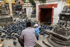 Een jongen voedt de duiven in Katmandu, Nepal Royalty-vrije Stock Afbeeldingen