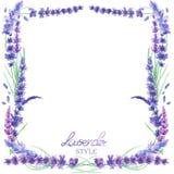Een kaartmalplaatje, kadergrens met de waterverflavendel bloeit, huwelijksuitnodiging Stock Afbeeldingen