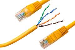 Een kabel van de ethernetdraad en een geel flard-koord met verdraaid paar stock foto's