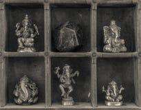Een Kabinet van Curiosities Royalty-vrije Stock Foto