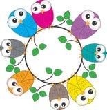Een kader van kleurrijke uilen Stock Foto