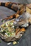 Een kameleon tijdens lunchtijd Stock Afbeeldingen