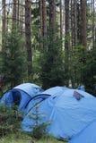 een kamp in het hout Stock Afbeeldingen