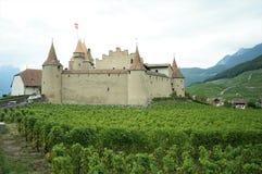 Een kasteel en een wijngaard stock foto's