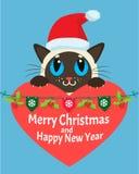 een kat in liefde Gelukkige Nieuwjaarskaartkerstmis Kitty With Red Santa Hat Stock Fotografie