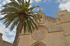 Een kathedraal Stock Foto