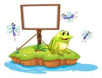 Een kikker en vliegen in een eiland Stock Foto's