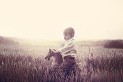 Een kind berijdt op een hobbelpaard op een weide Royalty-vrije Stock Fotografie
