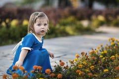 Een kind in een blauwe kleding hurkt dichtbij oranje bloemen Stock Afbeeldingen