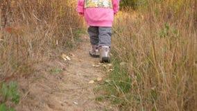 Een kind loopt langs een landelijke weg Babyvoeten in schoenen Autumn Landscape stock video