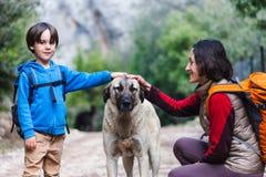 Een kind loopt met mamma en hond in het park stock fotografie