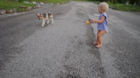 Een kind met een hond op een gang stock video