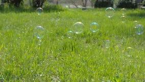 Een kind met haar moeder speelt met zeepbels Een gelukkige familie in de wildernis Het mamma en de dochter blazen bellen stock video