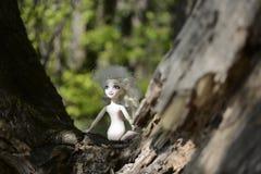 Een kindpop met wit haar, blauwe ogen en geen kleren ging op een boom in een groen bos weg royalty-vrije stock foto
