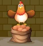 Een kip boven de eieren Royalty-vrije Stock Afbeeldingen