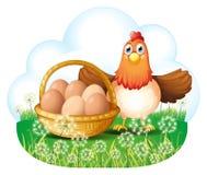 Een kip met eieren in een mand Royalty-vrije Stock Foto's