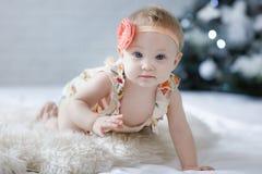 Een klein blauw-eyed meisje kruipt op een witte sluier tegen de achtergrond van een Kerstboom Royalty-vrije Stock Fotografie