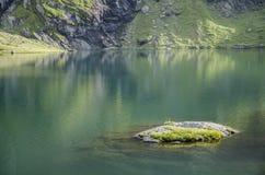 Een klein eiland in een klein bergmeer Royalty-vrije Stock Foto's