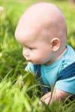 Een klein kind dat op het gras ligt Royalty-vrije Stock Foto