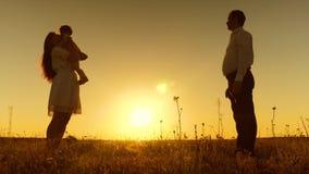 Een klein kind leert om met mamma en papa, jonge mooie familie op gebied met kind bij zonsondergang te lopen, Langzame motie stock video