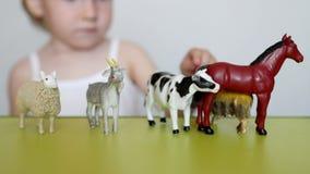 Een klein kind speelt het dierlijke leven met het leren speelgoed, ontwikkelt logica en motiliteit, de capaciteit om dieren te on stock footage