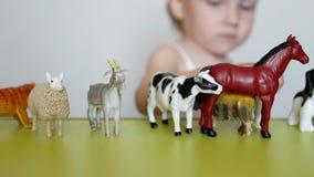 Een klein kind speelt het dierlijke leven met het leren speelgoed, ontwikkelt logica en motiliteit, de capaciteit om dieren te on stock videobeelden