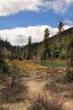 Een klein meer in de bergen Stock Foto