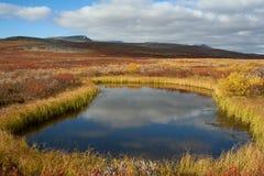 Een klein meer in de de herfsttoendra stock afbeeldingen