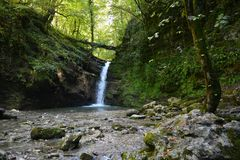 Een klein meer in het bos royalty-vrije stock foto's