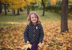 Een klein meisje in het de herfstbos stock foto