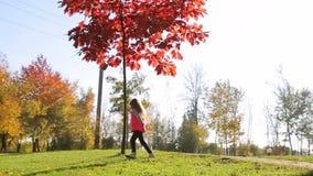 Een klein meisje in een roze jasjelooppas in een park dichtbij een boom met rode bladeren stock video