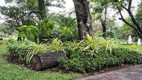 Een klein park in tuin royalty-vrije stock afbeelding