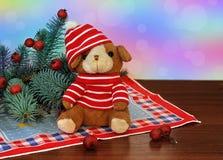 Een klein stuk speelgoed puppy in een rode hoed en nette takken met rode bessen naast het op colorbackground Stock Foto
