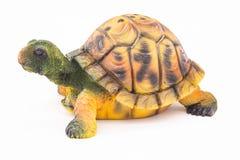 Een klein stuk speelgoed is een schildpad royalty-vrije stock foto's