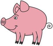 Een klein varkensprofiel Stock Fotografie