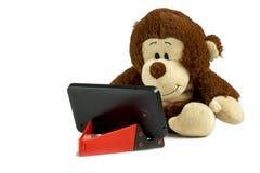 Een kleine aap zit en staart bij een smartphone Smartphone op een rode tribune Geïsoleerde foto Royalty-vrije Stock Fotografie